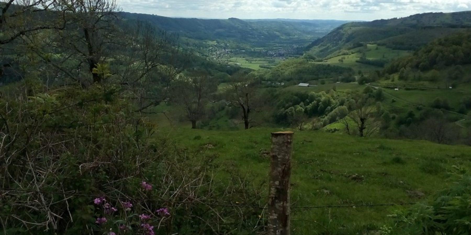 A quelques kilomètres de Vic sur Cère et de la Maison du Chevalier des Huttes, la ferme de Trielle, à Thiézac, d'où l'on peut contempler un panorama enchanteur, calme et verdoyant.